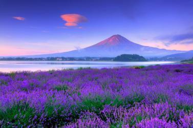 TOKYO - FUJI - NAGOYA - KYOTO - OSAKA