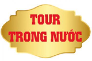 Tour trong nước từ 8 - 10 khách
