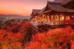 OSAKA - KOBE - KYOTO - NAGOYA - HAKONE - TOKYO