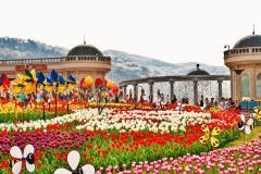 SEOUL - JEJU - NAMI - EVERLAND