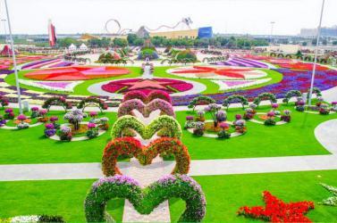 DUBAI - ABU DHABI - VƯỜN HOA MIRACLE (Mùng 1 - Mùng 5 Tết)