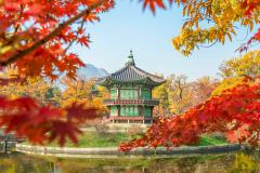 HÀN QUỐC: SEOUL - JEJU - NAMI
