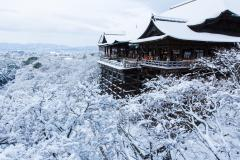 TOKYO - FUJI - NAGOYA - KYOTO - OSAKA ( Mùng 2 - mùng 6 tết)