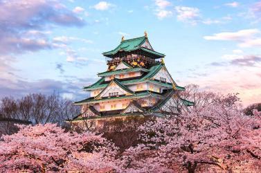 NHẬT BẢN mùa hoa anh đào: TOKYO - HAKONE - NAGOYA - KYOTO - OSAKA
